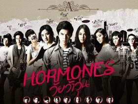 【泰剧OST】2013《荷尔蒙》OST下载