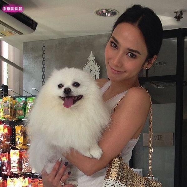 【泰娱新闻】盘点5位爱狗狗的泰国明星
